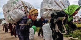The 'Mule Women' of Morocco
