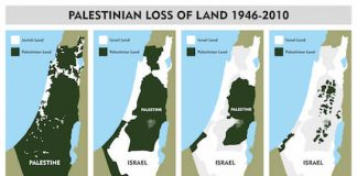 Americans believe Palestinians occupy Israeli land!