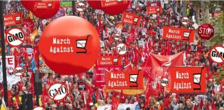 Berlin backs Monsanto, people are revolting against it.