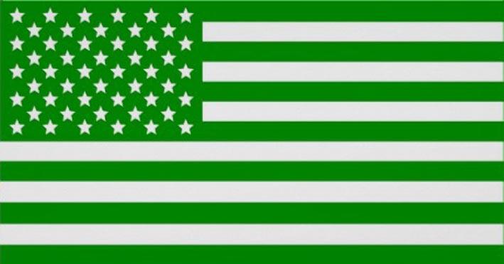 US Greens move towards ecosocialism