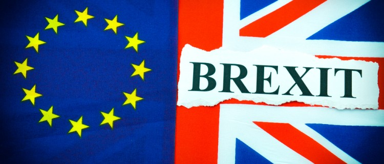 Should We Stay or Should We Go? A Debate Over Brexit