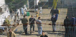 Over 100 Palestinian Political Prisoners on Hunger Strike