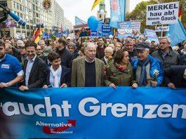Why Germans vote AfD