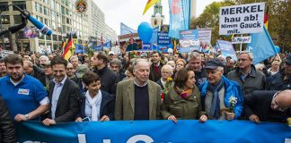 Why Germans vote AfD