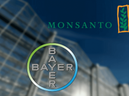 Trying to become owners of Life - Bayer/Monsanto's marriage in hell