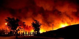 Portugal's response to forest fires undermined by austerity