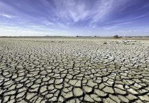 Open Letter Regarding Climate Change