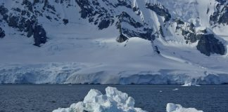 North Pole above freezing in sign of 'sudden' and 'very serious' climate change