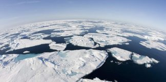 'Extraordinarily hot' Arctic temperatures alarm scientists