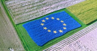 The consequences of the EU's international trade agreements for the European Agricultural Economy