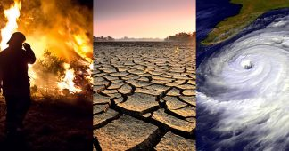 The consequences of climate change
