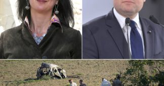 Une pensée pour Daphné, assassinée hier à Malte dans l'explosion de sa voiture