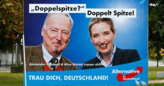 'Nazis in the Reichstag': All Eyes on Far-right AfD Party as Germans Vote in National Election
