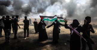 'Terrible massacre': Israel kills 55, injures 2,771 Gaza protesters as US embassy opens in Jerusalem