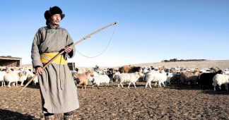 How Mongolia's nomads are adapting to climate change