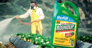 How Monsanto is killing us