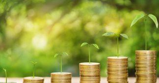 Fiscalité «écologique » Le matraquage fiscal se colore de vert !