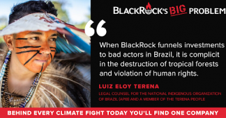 Sign the petition: Demand BlackRock stop financing Amazon destruction!