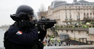 France Gilets jaunes: growing calls for Flash Ball riot control guns to be banned in France