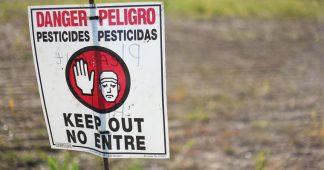 Global Poison Spring