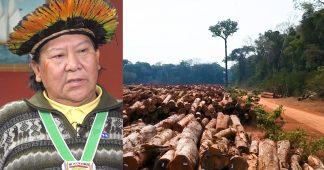 Brazilian Indigenous Leader Davi Kopenawa: Bolsonaro Is Killing My People & Destroying the Amazon