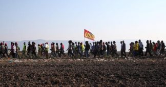 From fields to supermarkets, solidarity with laborers on strike