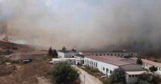Thousands evacuate as multiple blazes threaten Israeli communities amid heatwave
