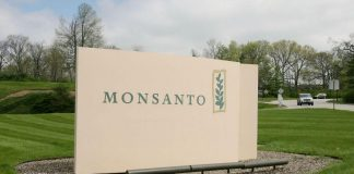 Putin is taking a bold step against biotech giant Monsanto